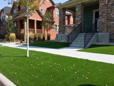 Artificial Grass La Presa California Lawn   Pools Commercial artificial grass