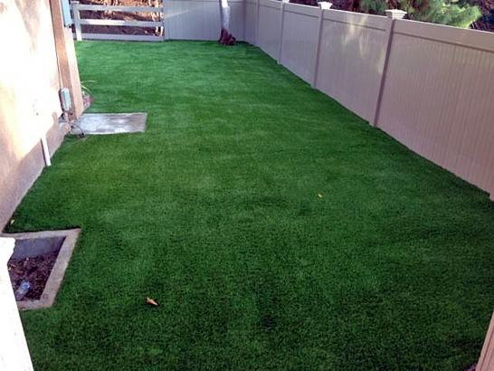 Artificial Pet Turf Fullerton California Installation  Pavers artificial grass