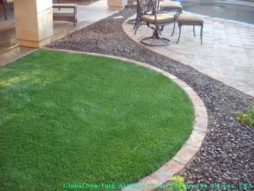 Artificial Pet Turf La Mesa California for Dogs artificial grass
