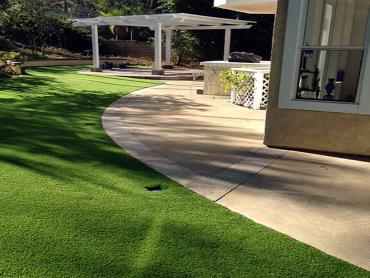 Artificial Grass Photos: Artificial Pet Turf Valle Vista California Installation  Swimming