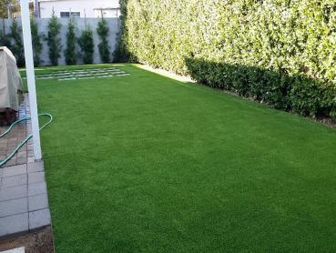 Artificial Grass Photos: Artificial Pets Areas Idyllwild-Pine Cove California Installation