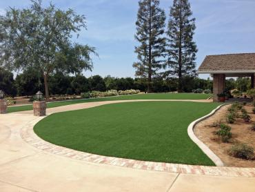 Artificial Grass Photos: Artificial Turf Lake Forest California  Landscape  Back Yard
