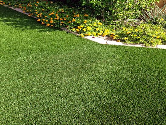 Artificial Grass Photos: Artificial Turf Seeley California  Landscape   Pools Back