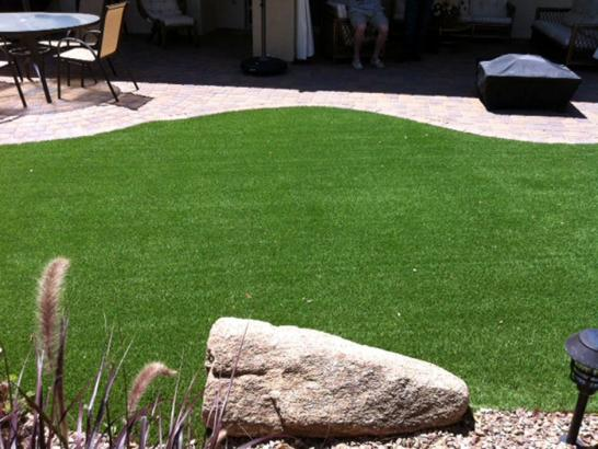 Artificial Grass Photos: Artificial Veterinary Clinic Fountain Valley California for