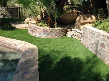 Artificial Grass Photos: Artificial Veterinary Clinic Oasis California Installation