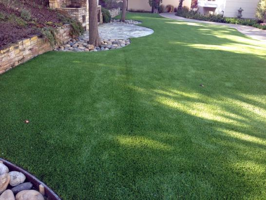 Artificial Grass Photos: Fake Animal Shelter Moreno Valley California for Dogs