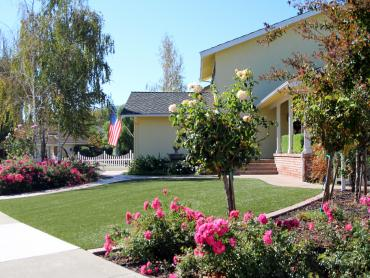 Artificial Grass Photos: Fake Turf Mead Valley California  Landscape  Front Yard