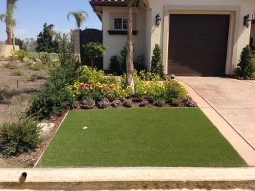 Artificial Grass Photos: Fake Turf Ocotillo California  Landscape  Back Yard