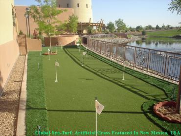 Golf Putting Greens National City California Artificial Turf artificial grass