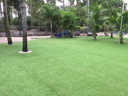 Grass Carpet Encinitas, California Rooftop, Commercial Landscape artificial grass
