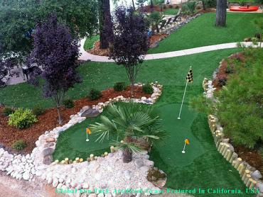 Putting Greens Coronado California Artificial Grass artificial grass