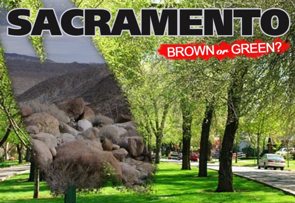 Sacramento: Back to Desert, or Lifting a Ban on Artificial Grass? artificial grass