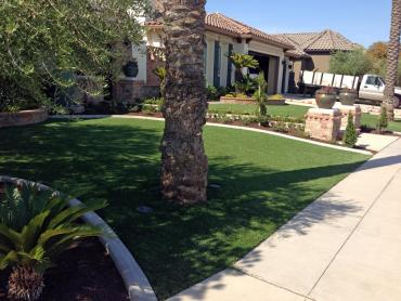 Artificial Grass Photos: Synthetic Grass Alpine California  Landscape  Back Yard