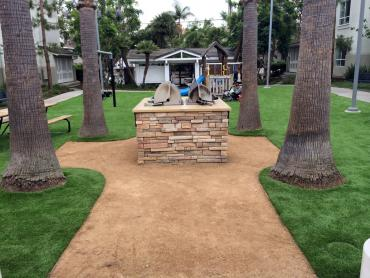 Synthetic Grass Chula Vista California  Landscape artificial grass