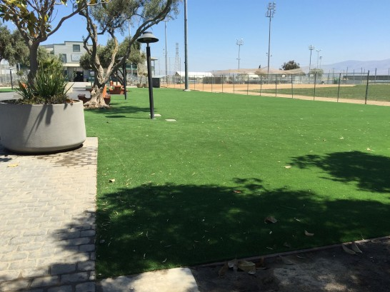 Artificial Grass Photos: Synthetic Grass Oceanside, California Home And Garden, Parks