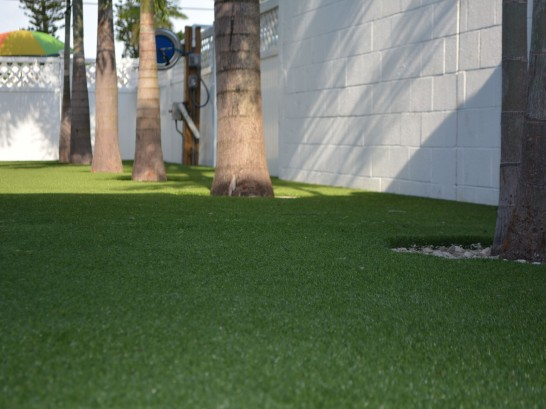 Artificial Grass Photos: Synthetic Grass Winter Gardens, California Design Ideas, Commercial Landscape