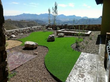 Artificial Grass Photos: Synthetic Pet Turf Mission Viejo California for Dogs  Back