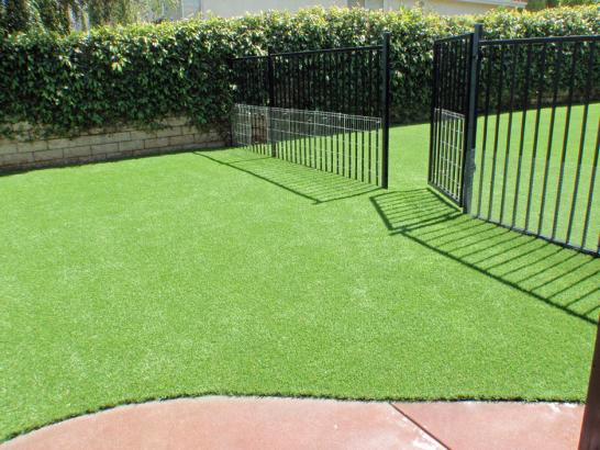 Artificial Grass Photos: Synthetic Pets Areas Sky Valley California Installation