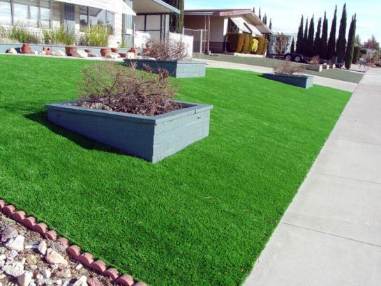 Artificial Grass Photos: Synthetic Turf Hawaiian Gardens California Lawn