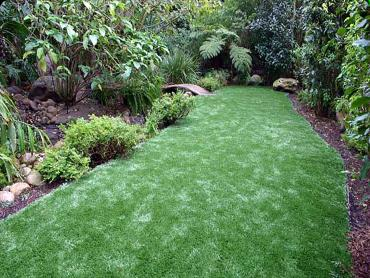 Artificial Grass Photos: Synthetic Turf Mountain Center California  Landscape  Pavers