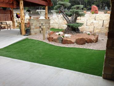 Synthetic Turf Winchester California Lawn  Back Yard artificial grass