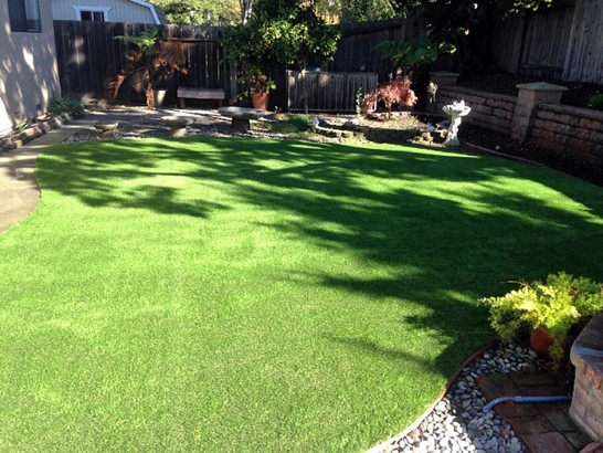 Artificial Grass Photos: Synthetic Veterinary Clinic Bloomington California for Dogs