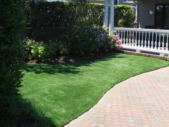 Artificial Grass Photos: Synthetic Veterinary Clinic Palm Desert California Installation
