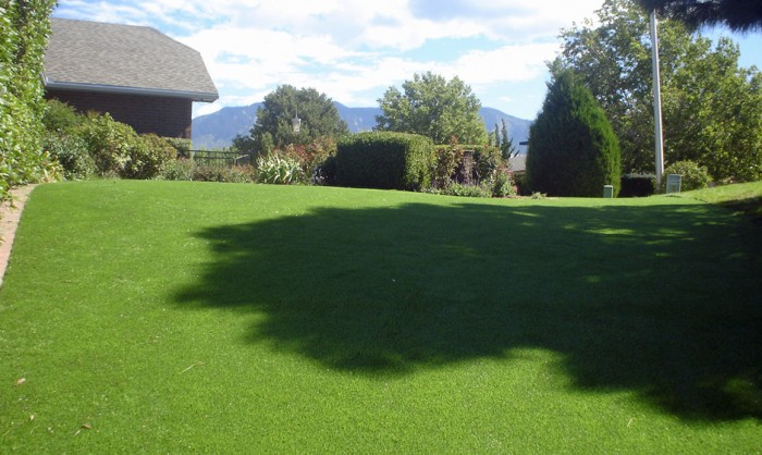 Artificial Grass for Commercial Landscape in San Diego, California